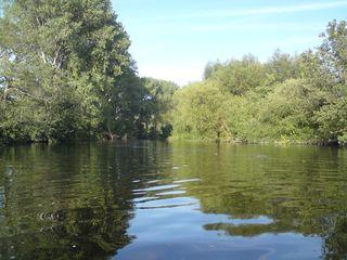 River Dee 1